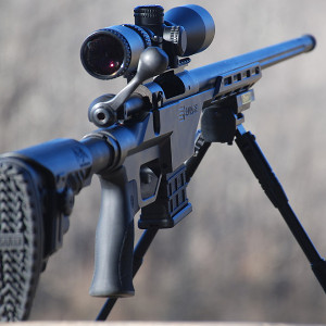 Permalink to: Precision Long Range Class I